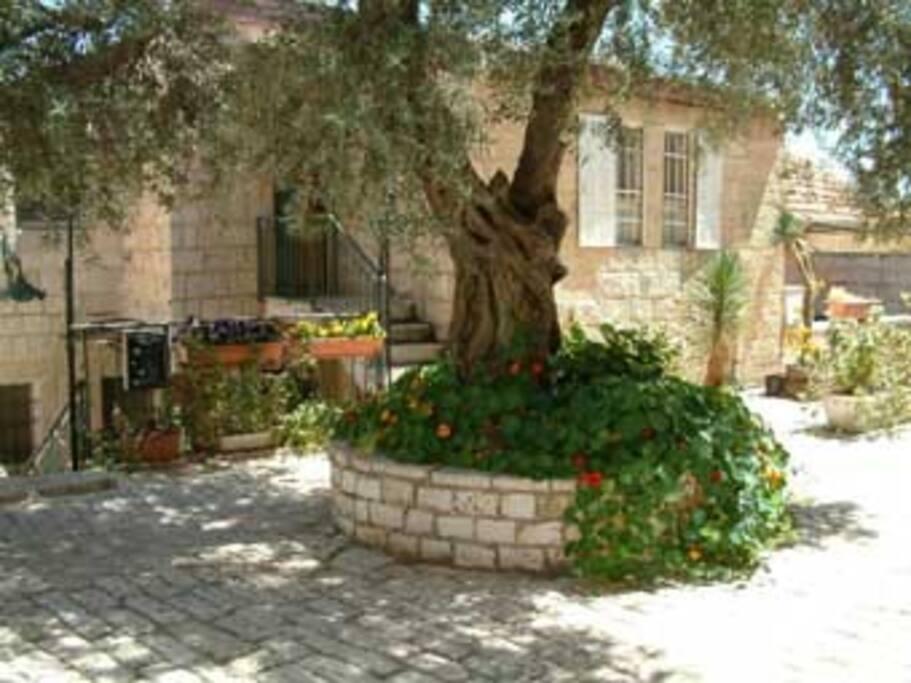 Avissar House in Yemin Moshe