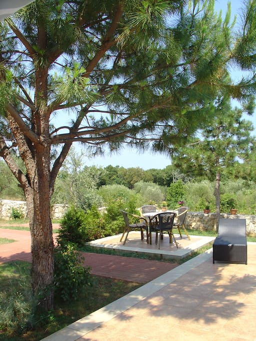 Small terrace (common)