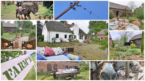 Barrierefreie Wohnung auf Alleinlagehof FARM N°16