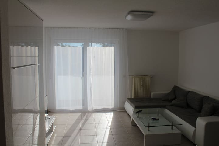 Compact 1 Room Apartment near Audi, Lidl, Kaufland - Neckarsulm - Apartment