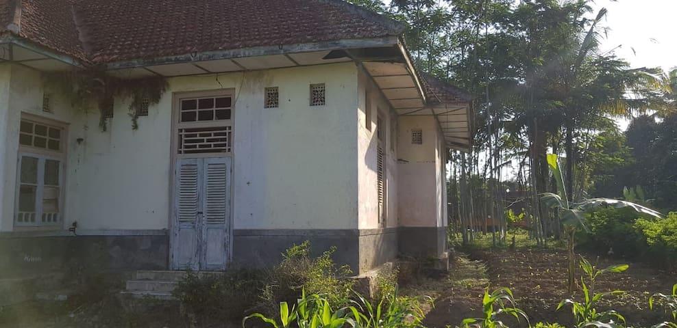 Villa Tua peninggalan Belanda