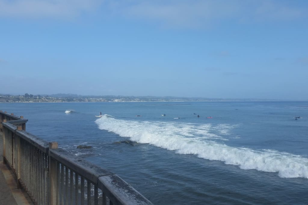 Located in Capitola Village a few blocks from capitola beach, shops and restaurants!