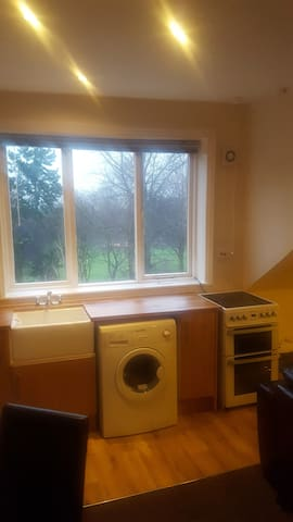 Entire Flat Overlooking A Park, Near City Centre - Leicester - Appartement