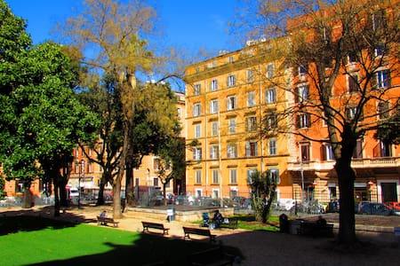 Termini Guesthouse camera singola - Roma