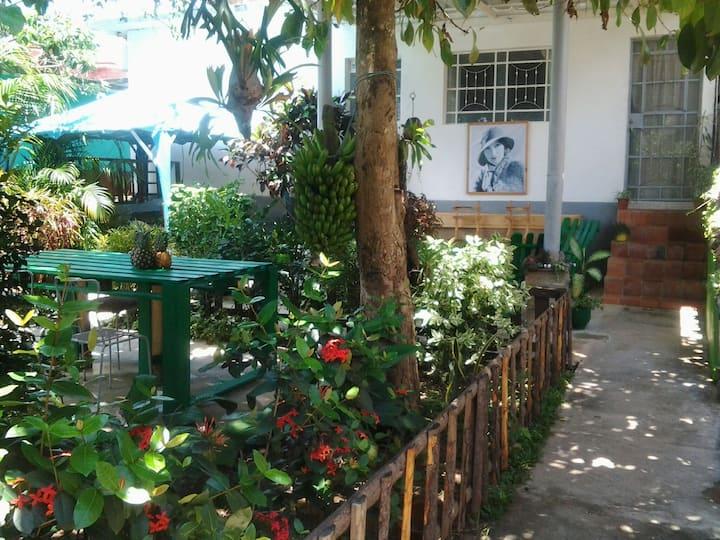 El Jardín de Daynelis B&B Horseback riding tour 2