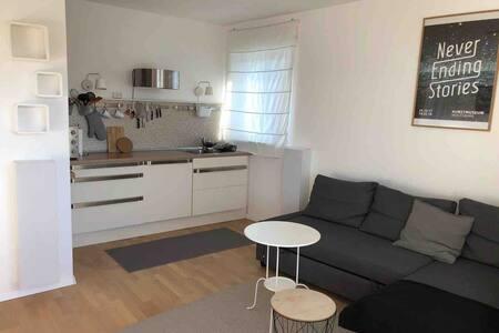 Helle gemütliche Wohnung mit großem Balkon