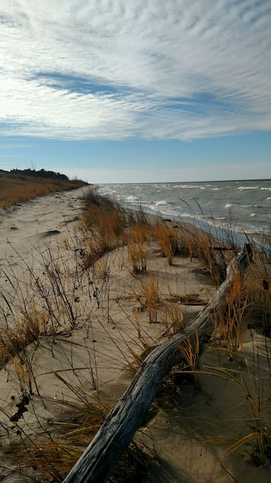 The dunes at Thanksgiving