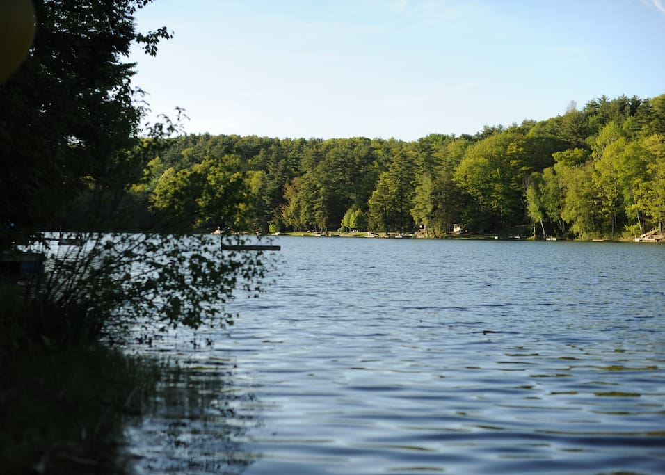 View of the lake from the dock
