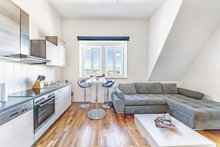 Penthouse close to belvedere & central station