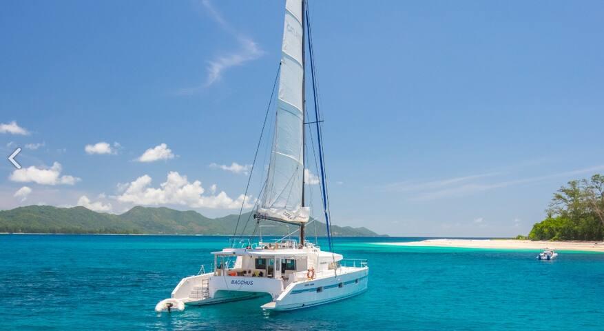 Catamaran for 8 people