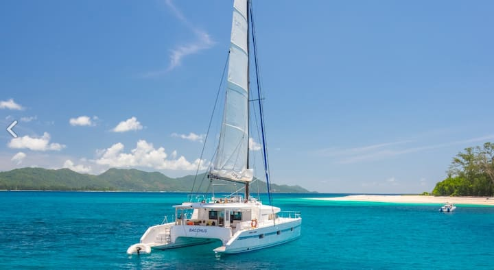 Catamaran for 8 people