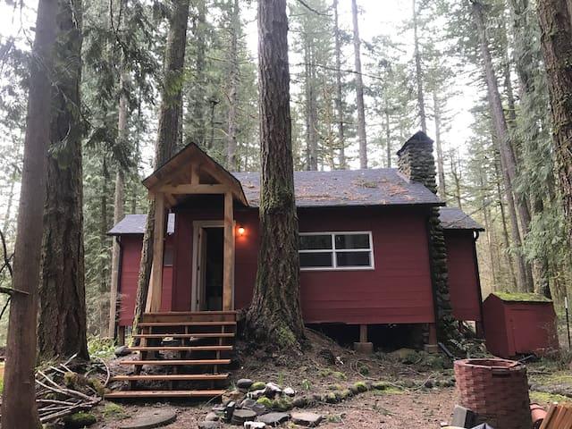 Modern Mount Hood Cabin