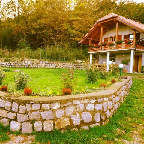 Vineyard cottage Planinc (App) - Rožič Vrh