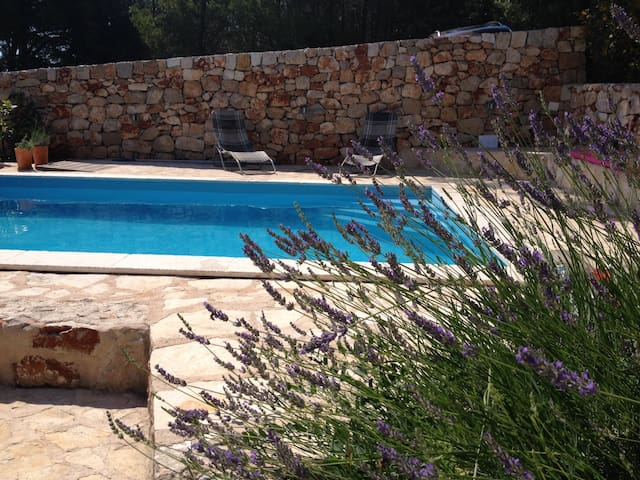 Vila Familia Hvar-modern apartments with a pool - Jelsa - Pis