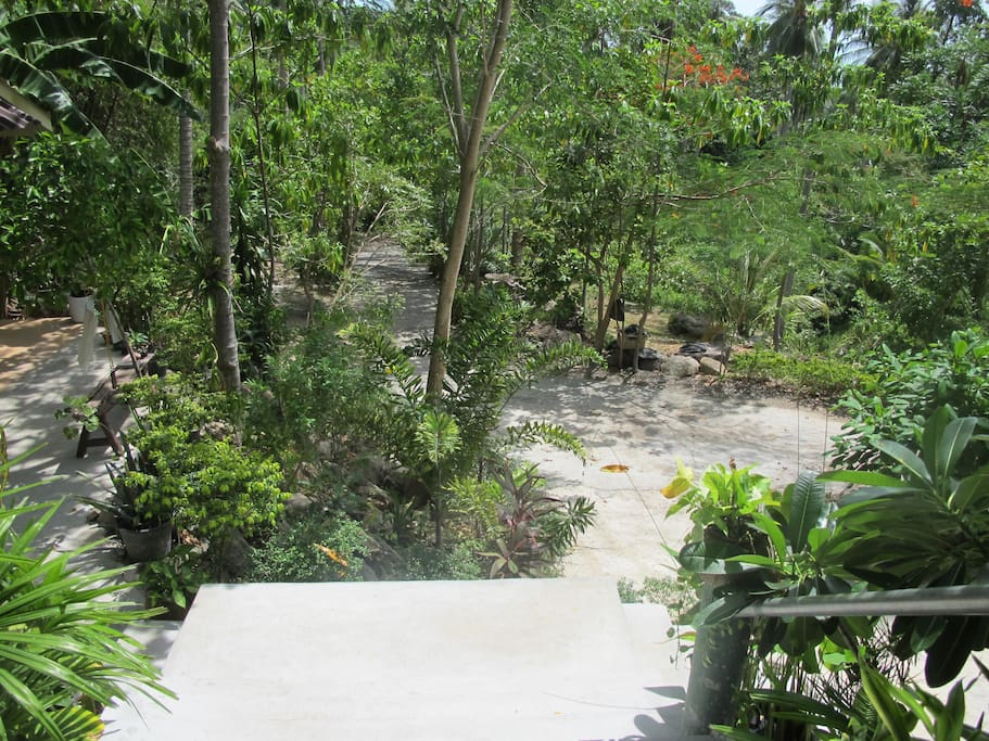 Samui's secluded hideaway place with clean, comfy lodge for two and a lot of green space where you can set up camping (for extra ppl). Also provided: Inclusive B/F with free-range, organic eggs and space with a great sea view for a private party or bonfire.