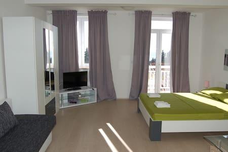 Apartments Villa Silvana / Studio A4 2+0 - Mlini