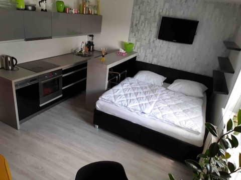 設計公寓Královo極