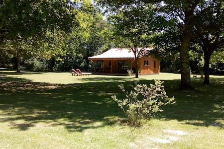 New Eco Lodge 1, near forest and beach.