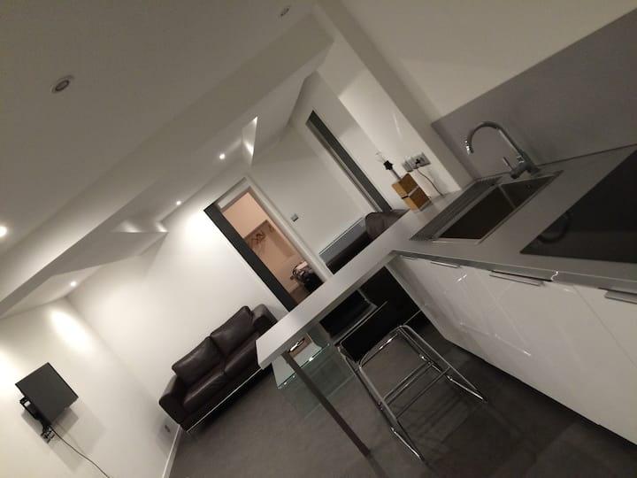 Appartement type F2 neuf au coeur de la ville