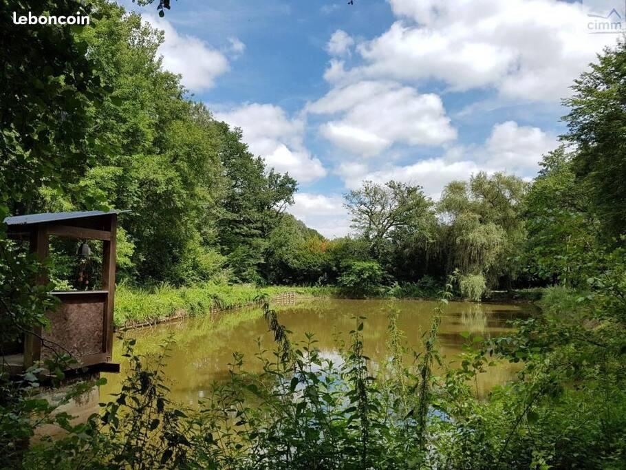 L'étang de peche