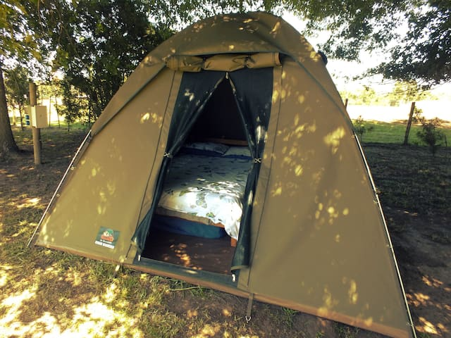 """Comfortable Camping """"Sunrise Butterfly tent"""""""