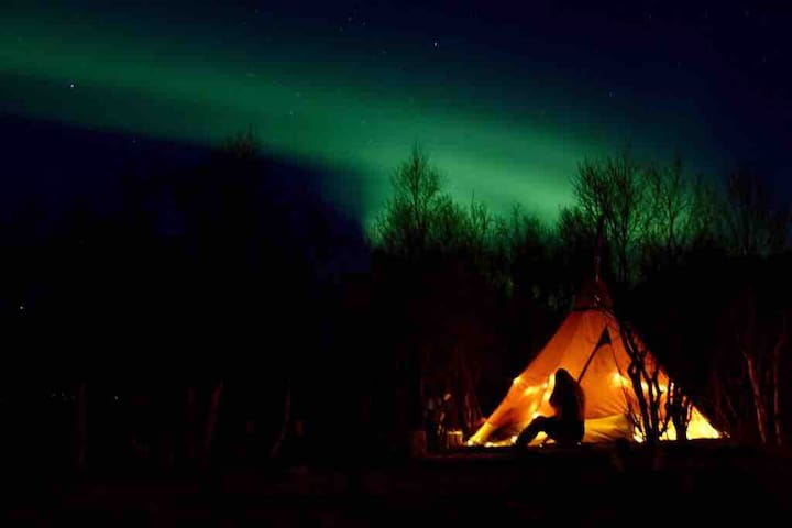 A unique night under the arctic northern lights