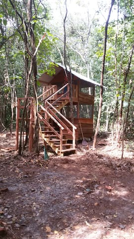 Upper Level Treeline Loft..#2 - Georgetown - Cabaña