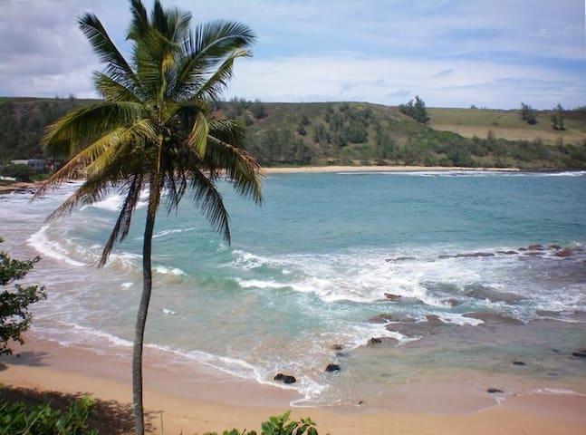 Moloa'a Bay, Home of Gilligan's Island