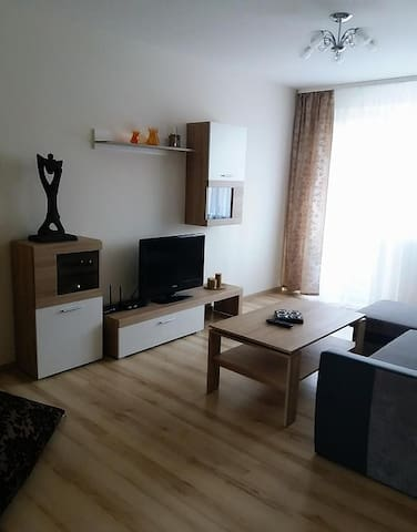 Apartament in Ramygalos str.
