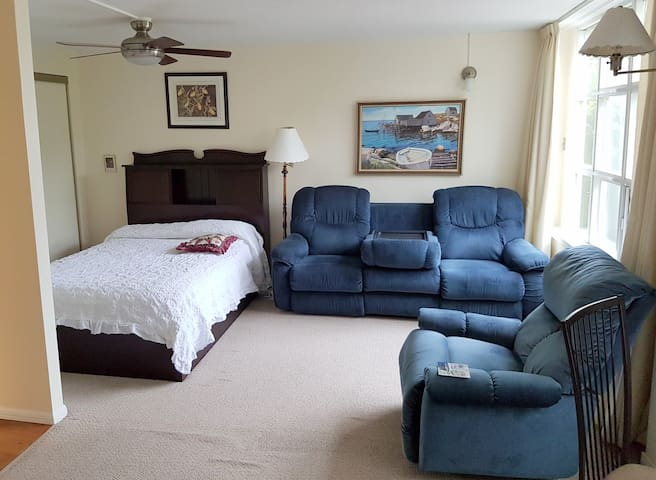 Living room and bedroom with queen-sized mattress. Storage underneath the bed.
