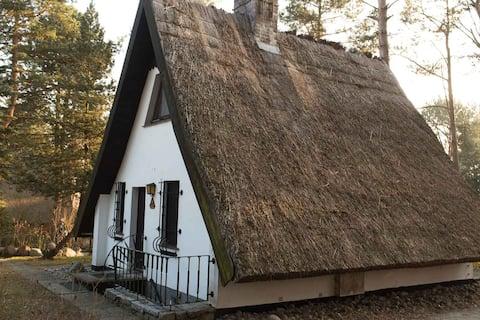 Idyllische Ruhe im Reetdachhaus auf Usedom