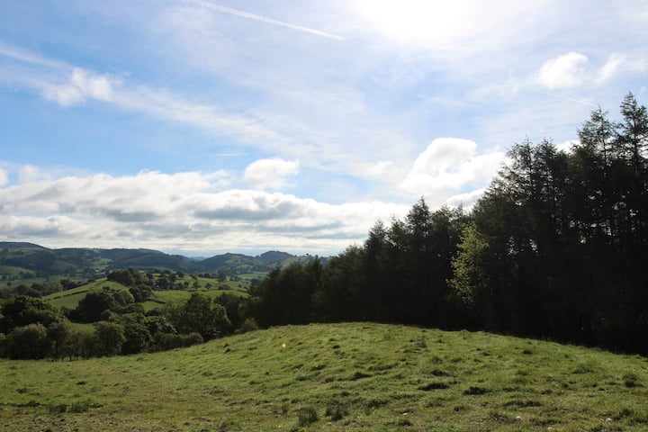 Little Ridge - Family retreat near Lake Vyrnwy