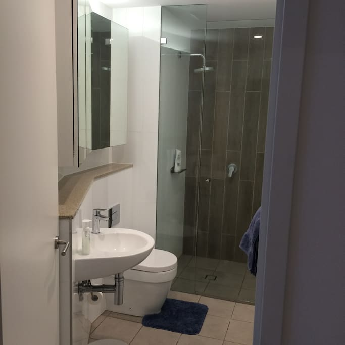 Private bathroom, walk-in shower, storage space. Basic amenities and towels included.
