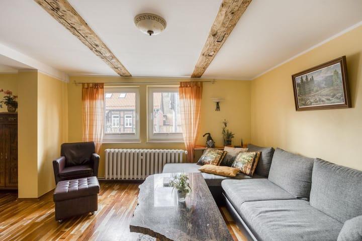 Premium Holiday Home in Wernigerode with Garden