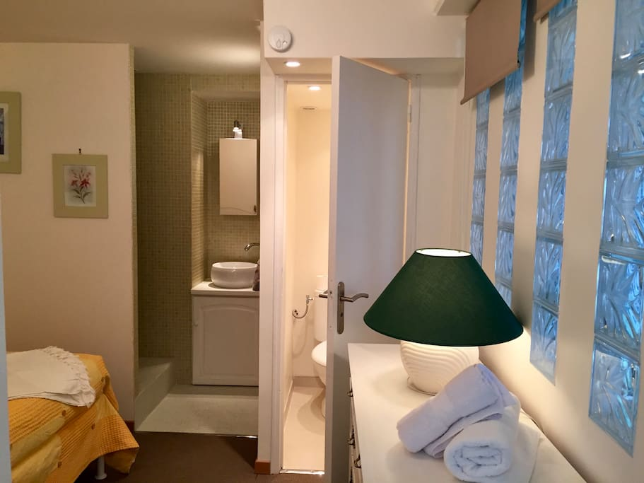 Chambre single en suite avec douche, lavabo et toilette. Single bedroom in suite with shower, sink and toilet.