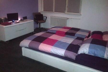 Großes Zimmer in der Künstlerkolonie Breitenbach - Berlin - Apartemen