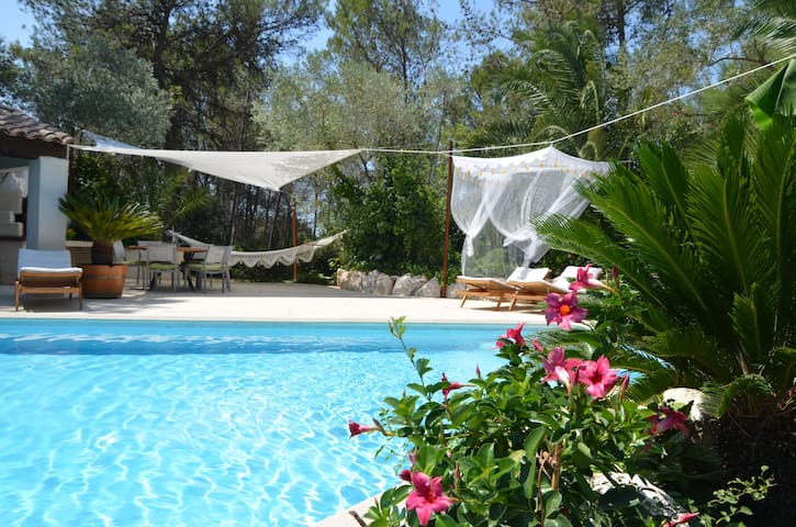 Villa contemporaine avec grande piscine - Saint-Clément-de-Rivière - Haus