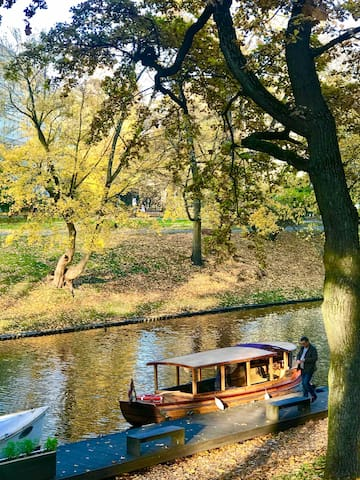 The Canal is next to Home :)  It's a 3 min walk to see the weather changing! Autumn is HERE! :)