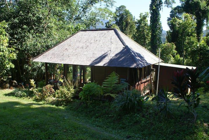 Unique Bali hut in the rainforest