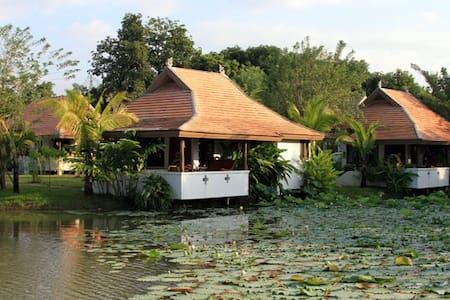 Jasmine Hills Lodge - Tambon San Klang - Бутик-отель