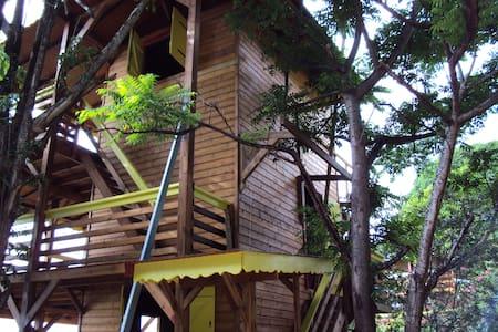 Guadeloupe-Paradisio Talipo - Cabana en un arbre