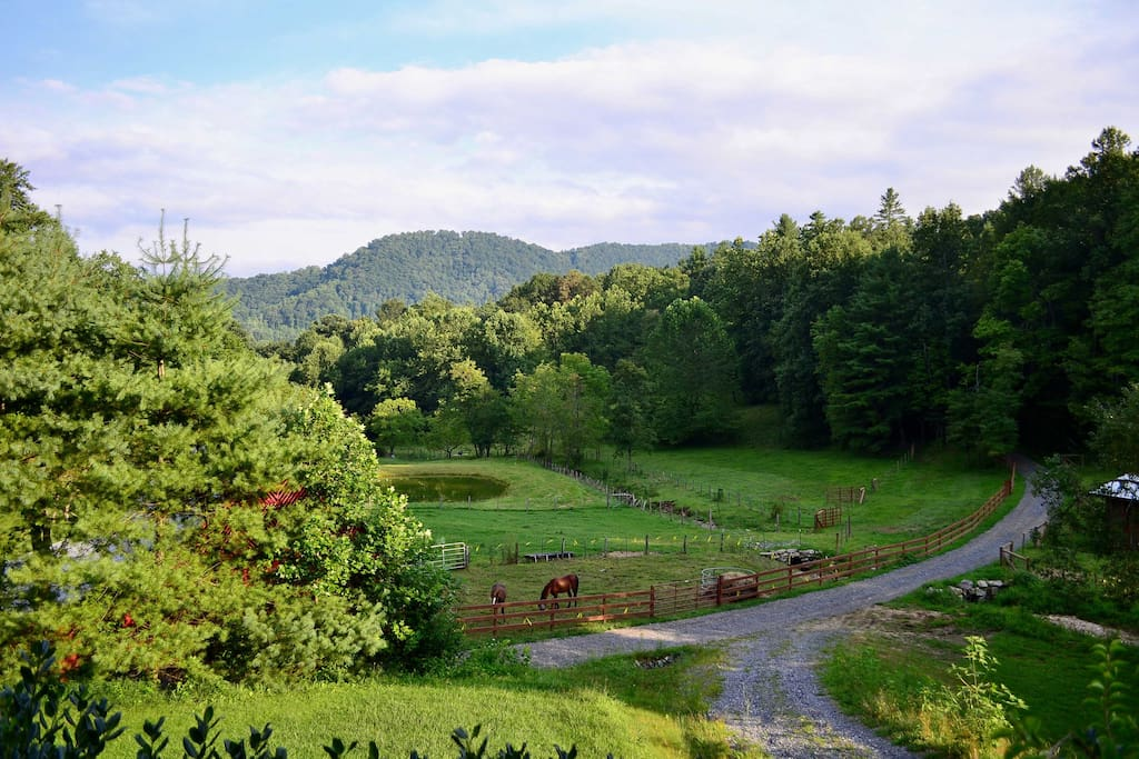 This beautiful property is nestled on a farm with stunning views!
