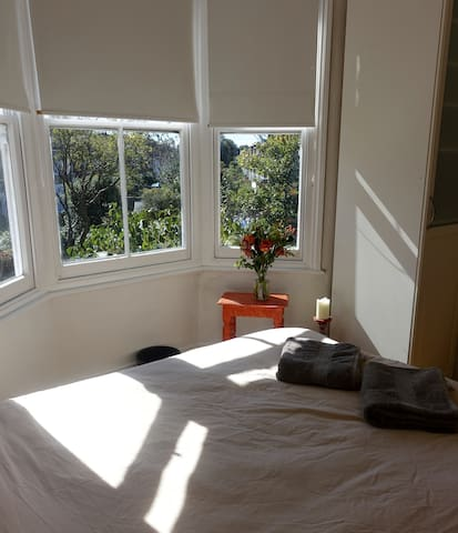 Bright & spacious private room in trendy Brockley!