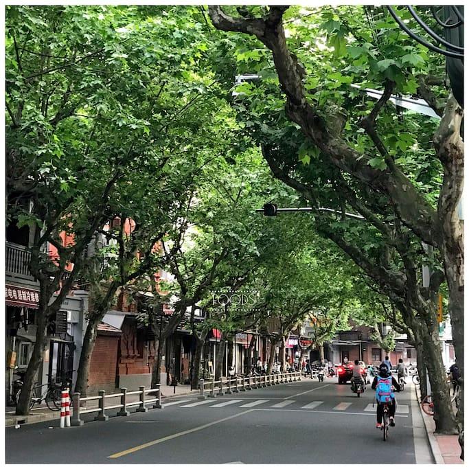 小区周边风景、适合骑车体验上海的弄堂风