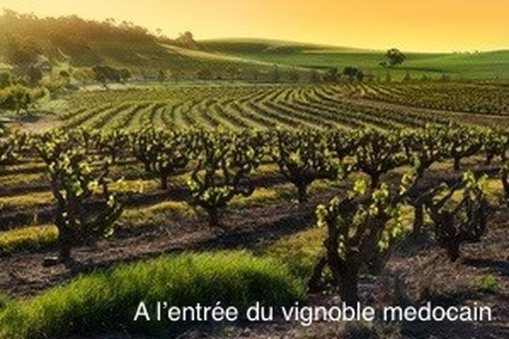Bordeaux, Médoc & Océan