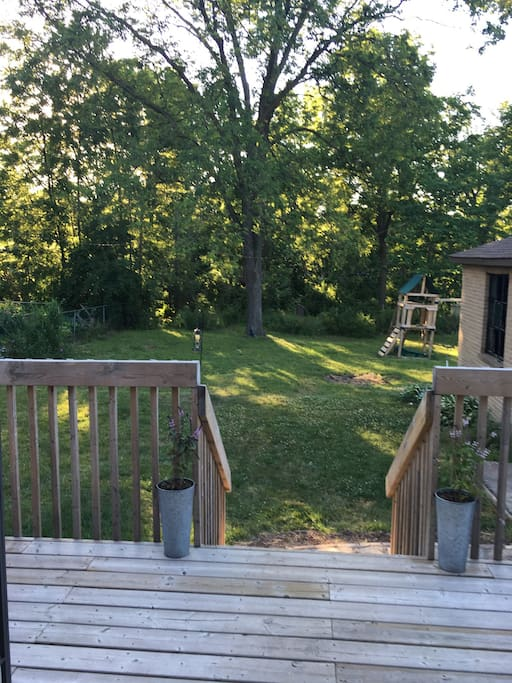 Our back yard attracts many birds and is a quiet place to sit and enjoy nature.
