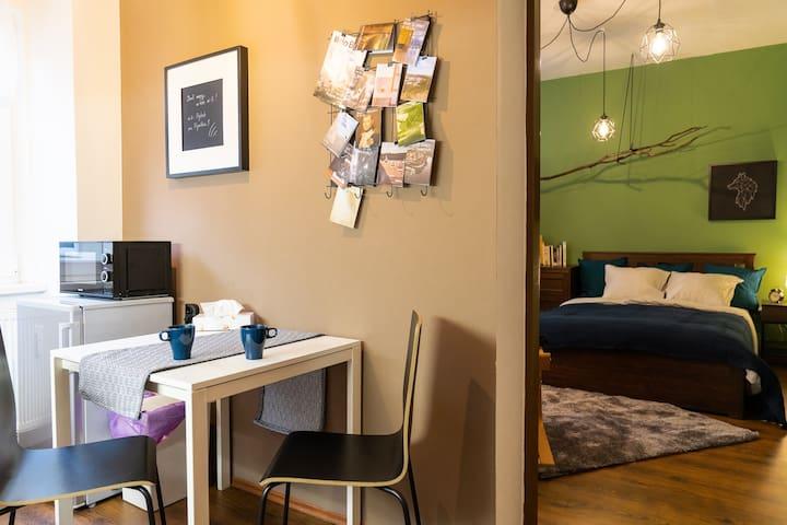 Gentlemen's Apartment near Brno-Center