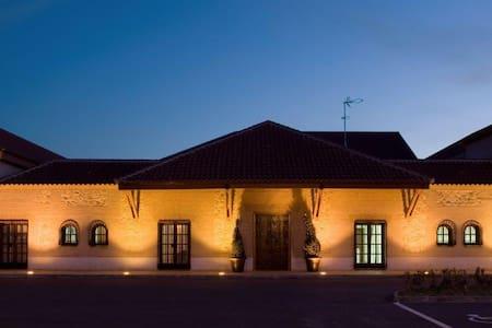 Bodegas Hacienda Albae - Argamasilla de Alba - Castle