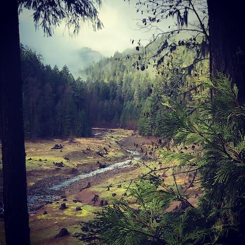 A favorite mountain biking and trail