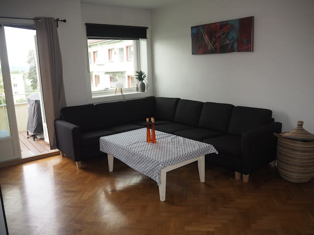 Nice apartment for rent in Oslo!